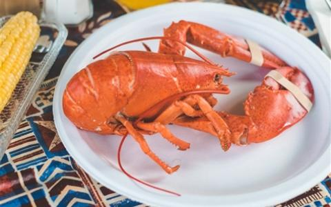 The Nordic 2021: All You Can Eat Lobster is BACK!